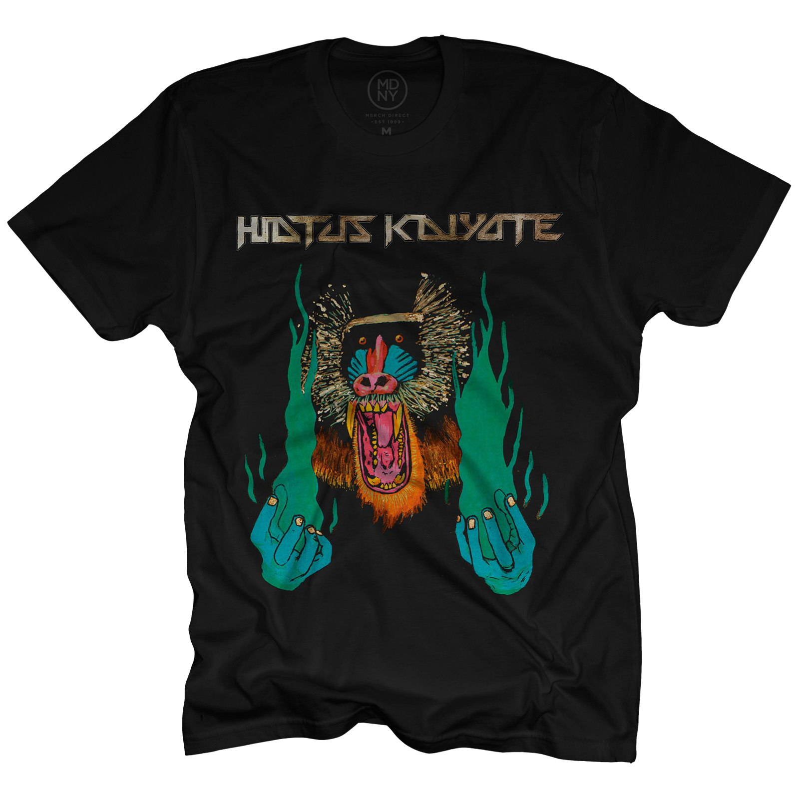 Image Result For Hiatus Kaiyote Choose Your